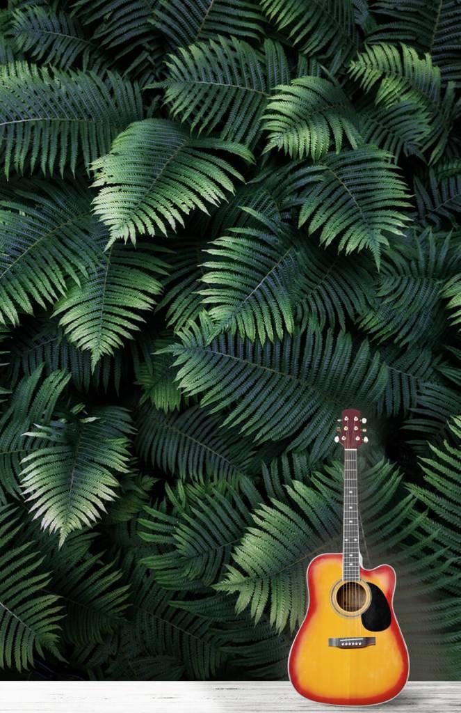 Bladeren - Grote palmbladeren - Woonkamer 3
