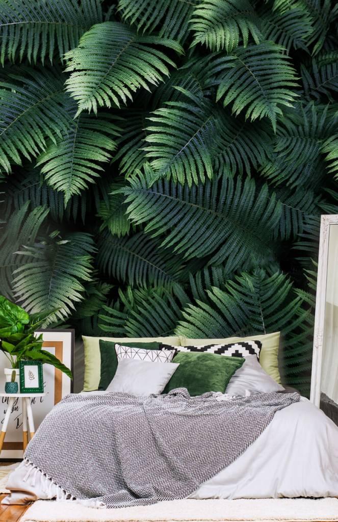 Bladeren - Grote palmbladeren - Woonkamer 6