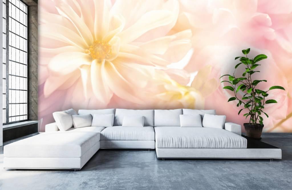 Bloemenvelden - Heldere bloemen - Slaapkamer 5