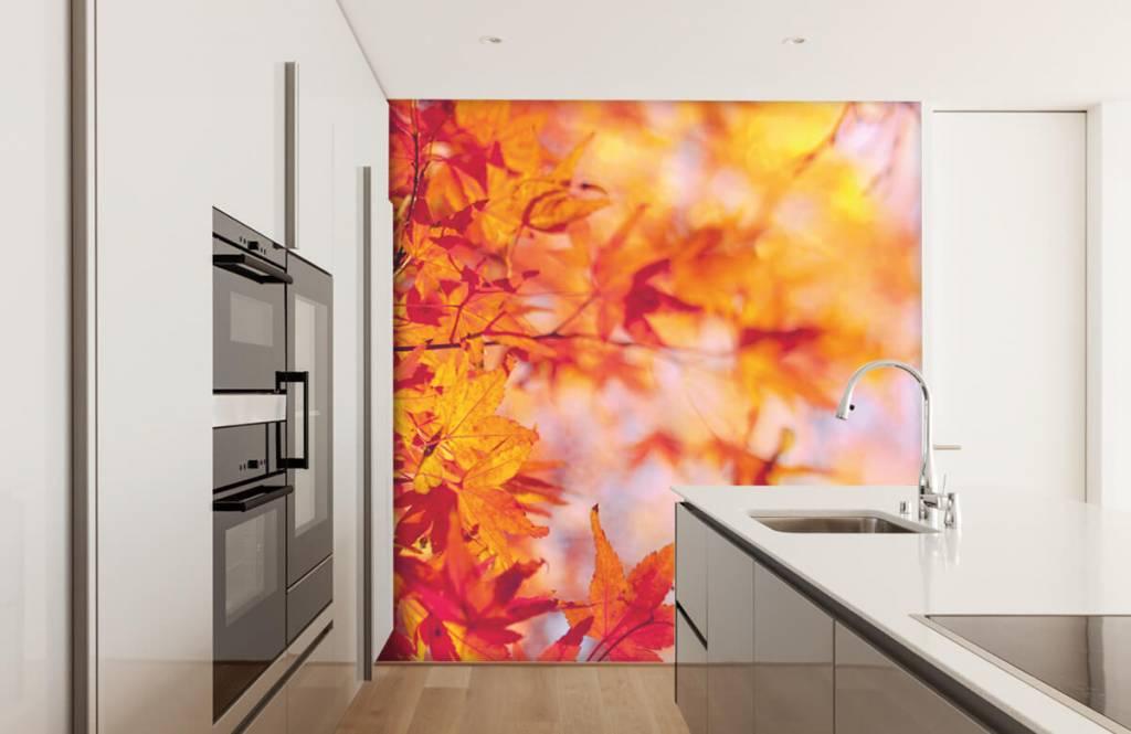 Bladeren - Herfstbladeren - Slaapkamer 3