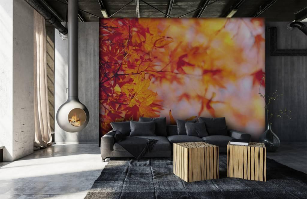 Bladeren - Herfstbladeren - Slaapkamer 6