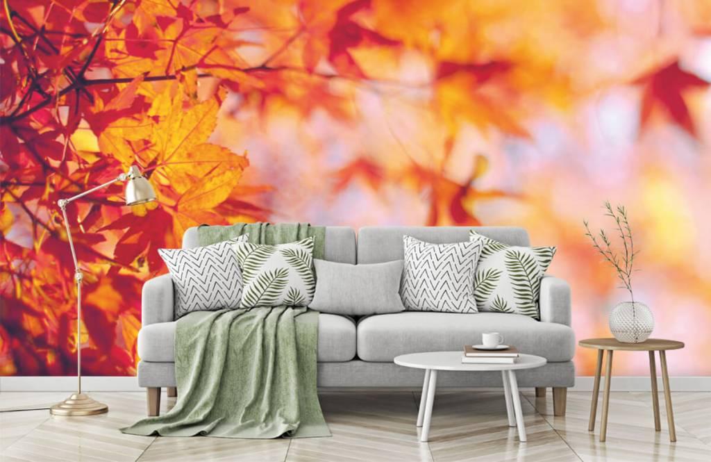 Bladeren - Herfstbladeren - Slaapkamer 7