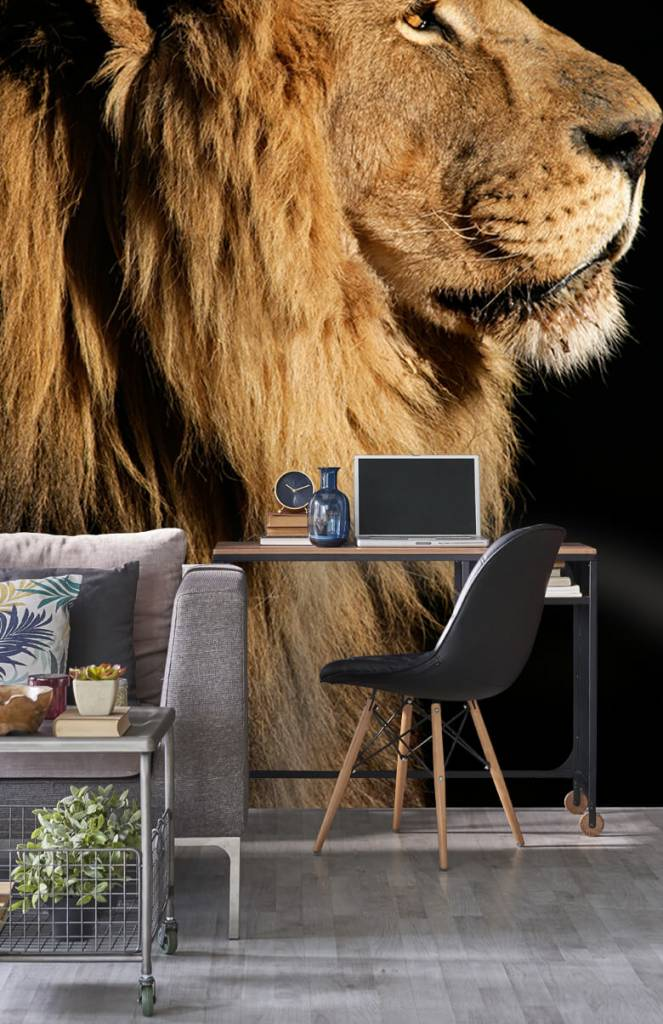 Roofdieren - Side profile van een leeuw - Tienerkamer 2