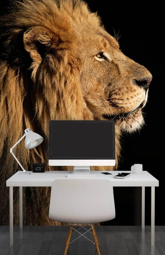 Roofdieren - Side profile van een leeuw - Tienerkamer 3