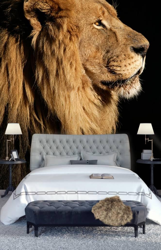 Roofdieren - Side profile van een leeuw - Tienerkamer 4