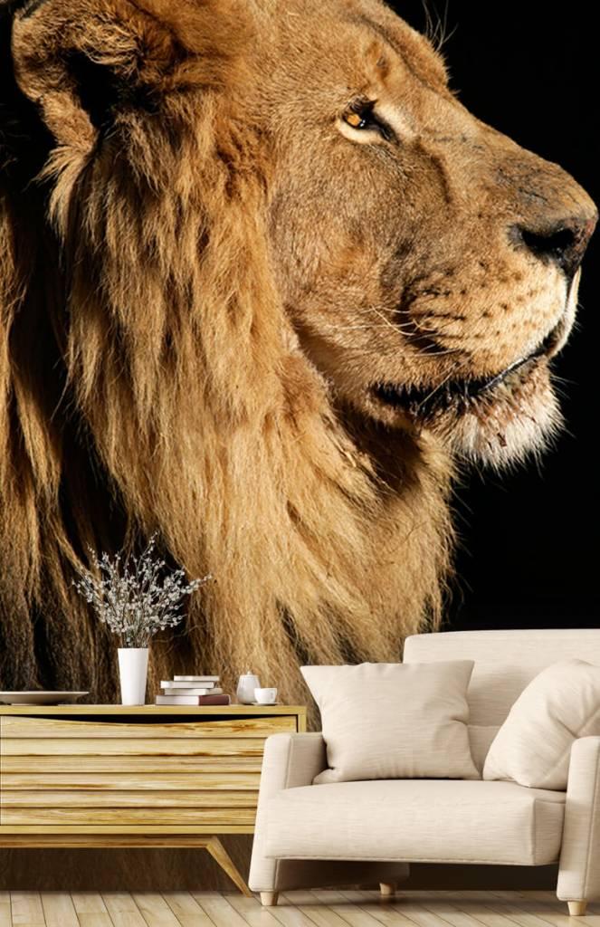 Roofdieren - Side profile van een leeuw - Tienerkamer 5
