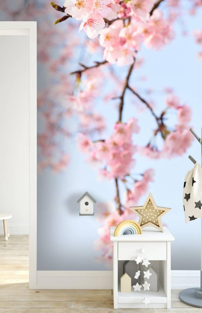 Bloesem - Japanse bloesems - Kinderkamer 1