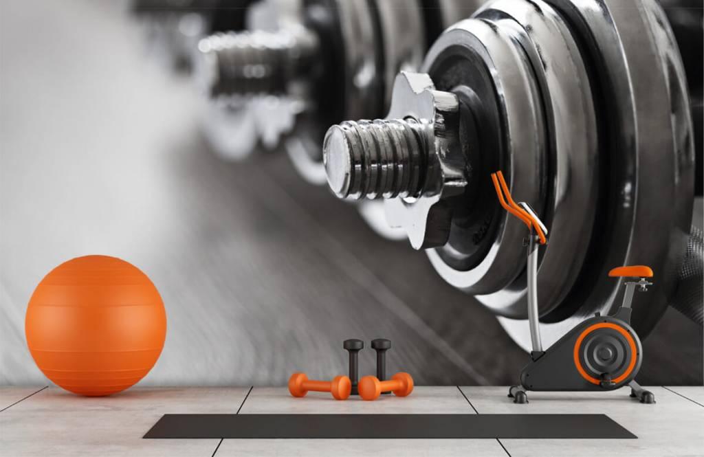 Fitness - Klassieke dumbells - Hobbykamer 1