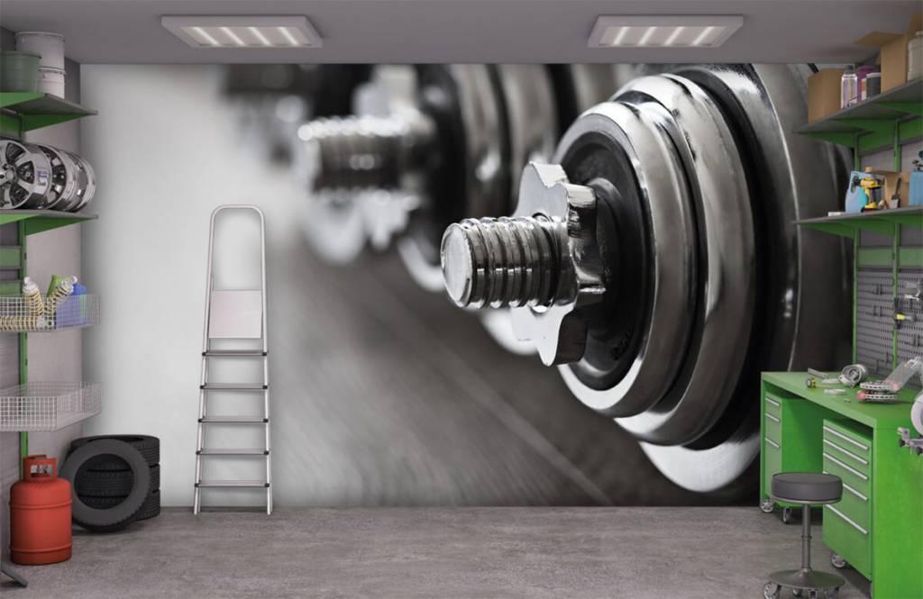 Fitness - Klassieke dumbells - Hobbykamer 3