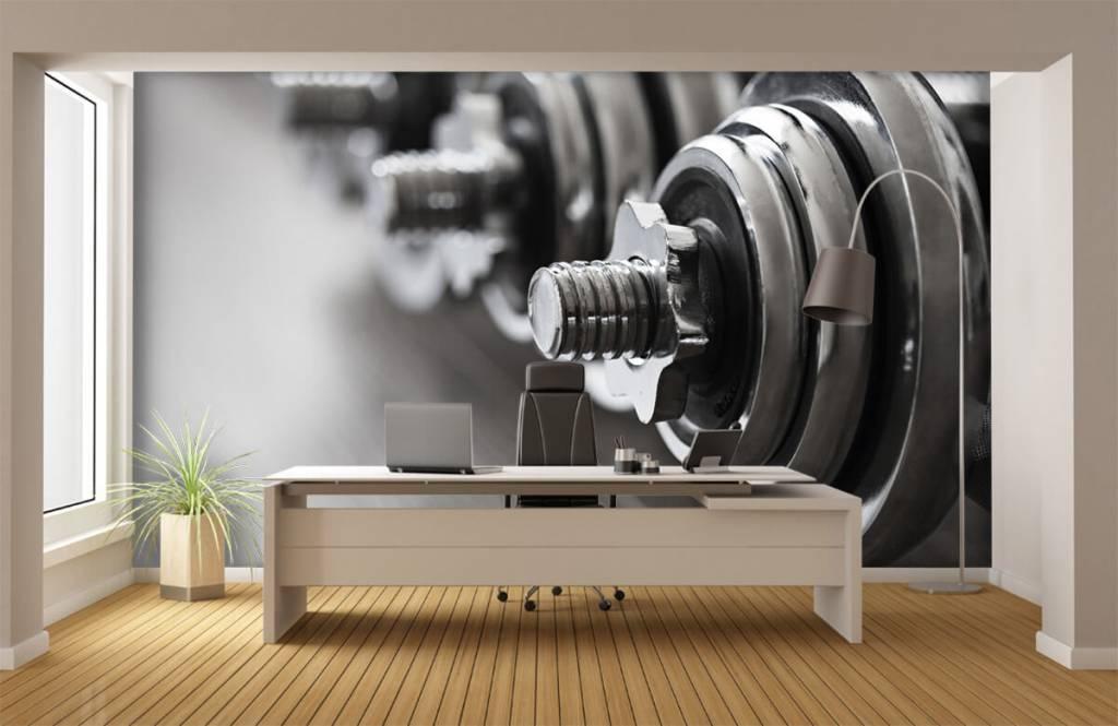 Fitness - Klassieke dumbells - Hobbykamer 5