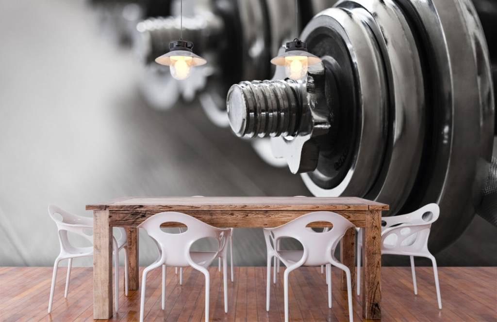 Fitness - Klassieke dumbells - Hobbykamer 8
