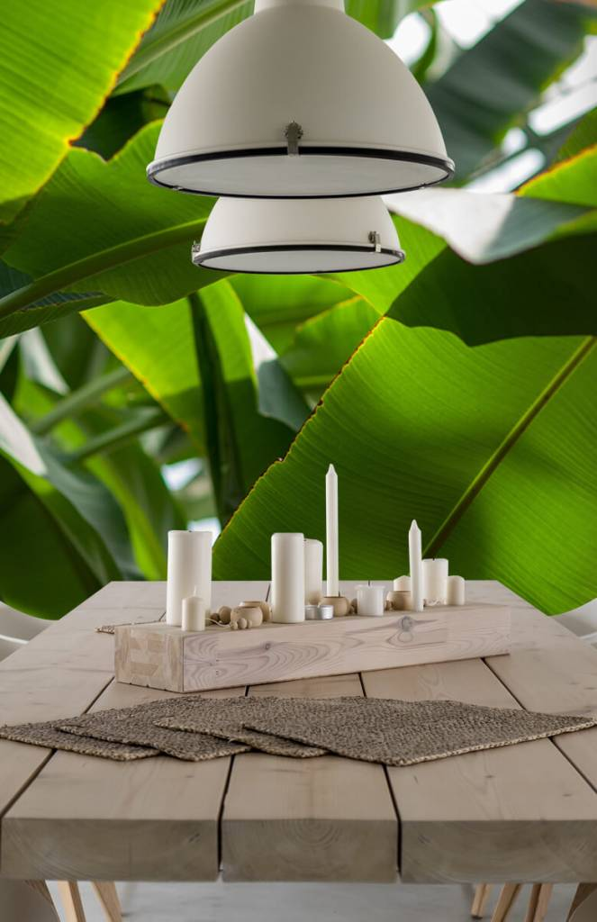 Bladeren - Palmbladeren - Computerruimte 4