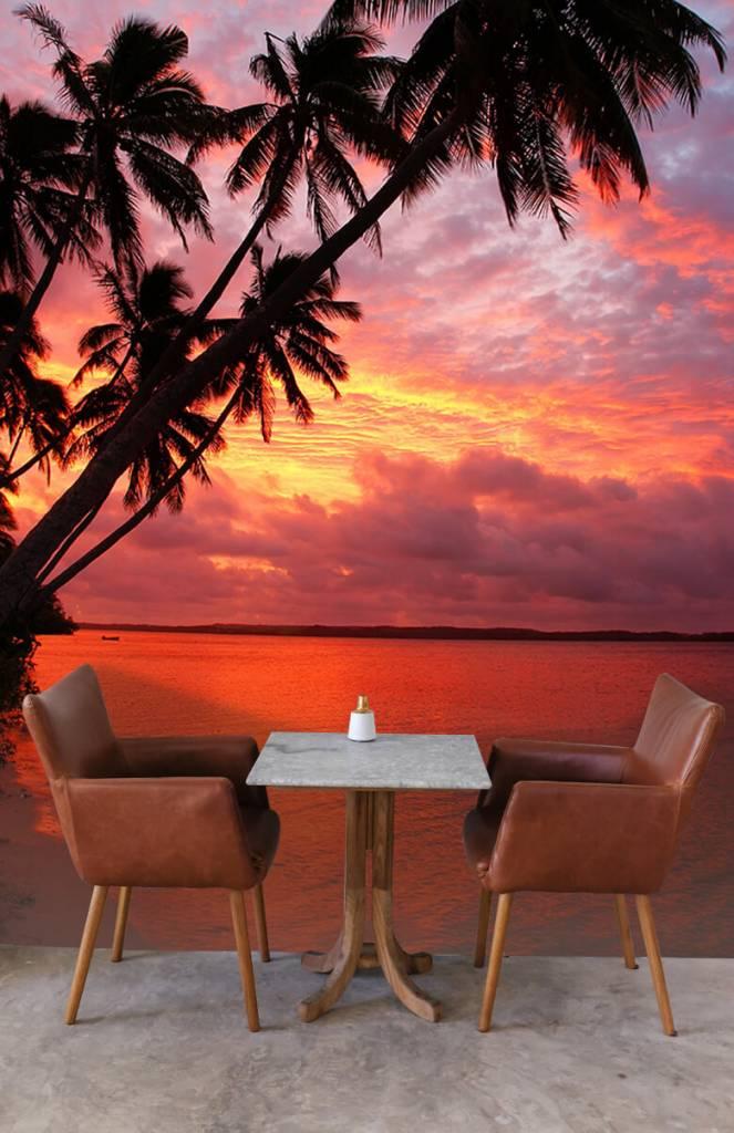 Zomer behang - Palmbomen over een rode oceaan - Slaapkamer 4