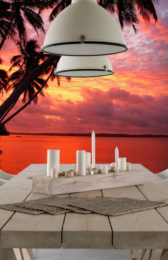 Zomer behang - Palmbomen over een rode oceaan - Slaapkamer 5