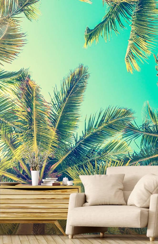 Palmbomen - Behang met palmbomen - Slaapkamer 2