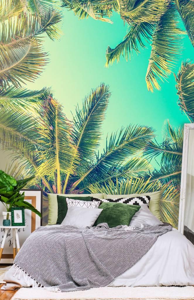 Palmbomen - Behang met palmbomen - Slaapkamer 5