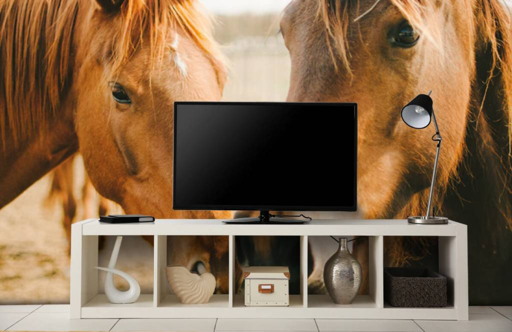 Paarden - Twee paarden - Kinderkamer 3