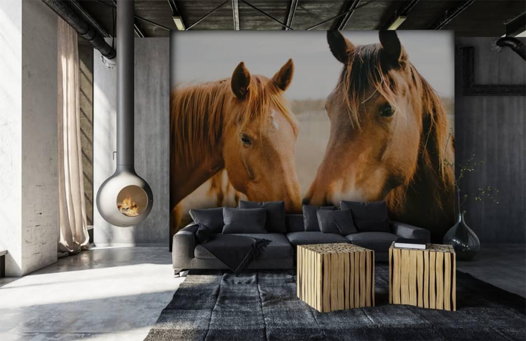 Paarden - Twee paarden - Kinderkamer 6