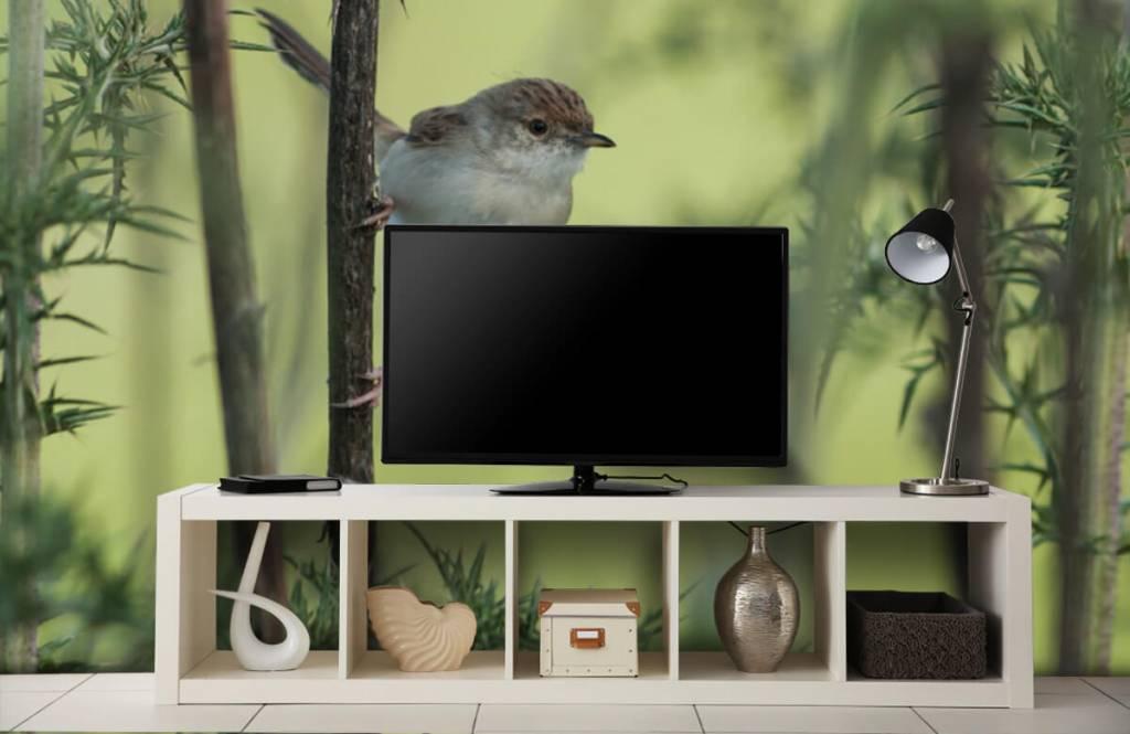 Vogel behang - Vogel op een tak - Hobbykamer 4