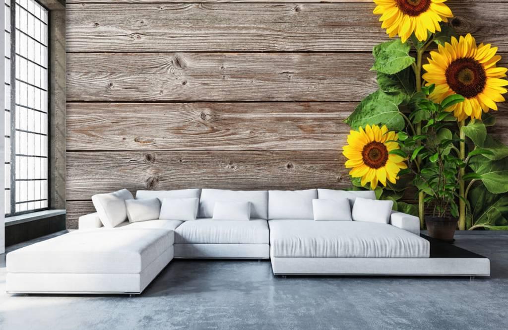 Zonnebloemen - Zonnebloemen en hout - Garage 5