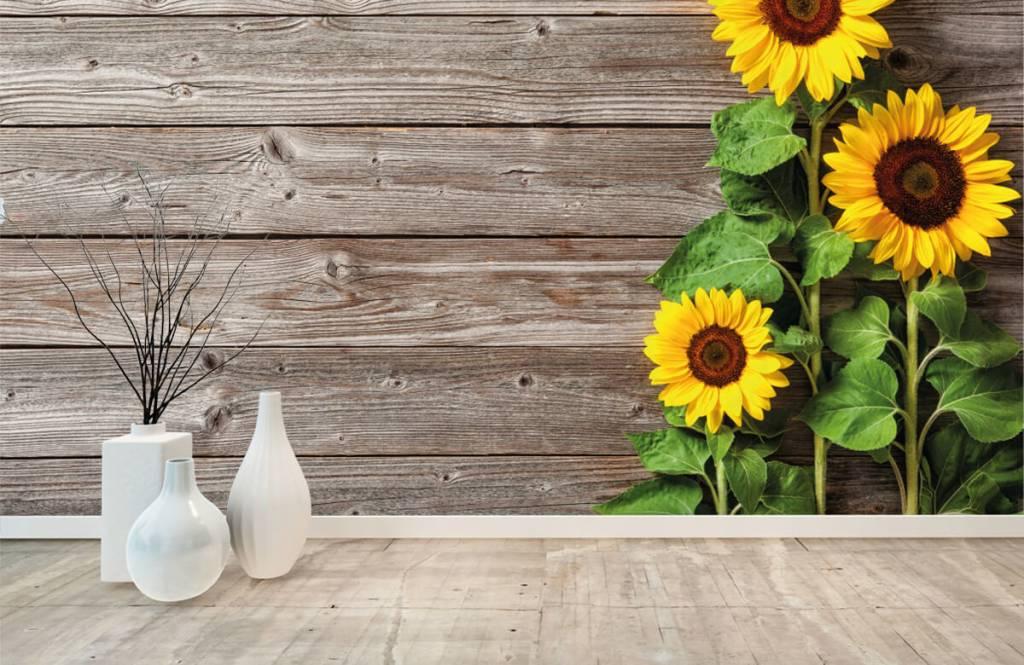 Zonnebloemen - Zonnebloemen en hout - Garage 8