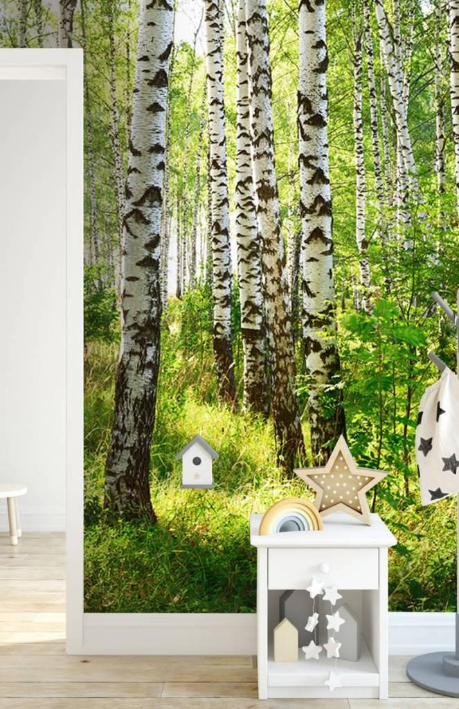 Bomen - Boomstammen - Hobbykamer 4