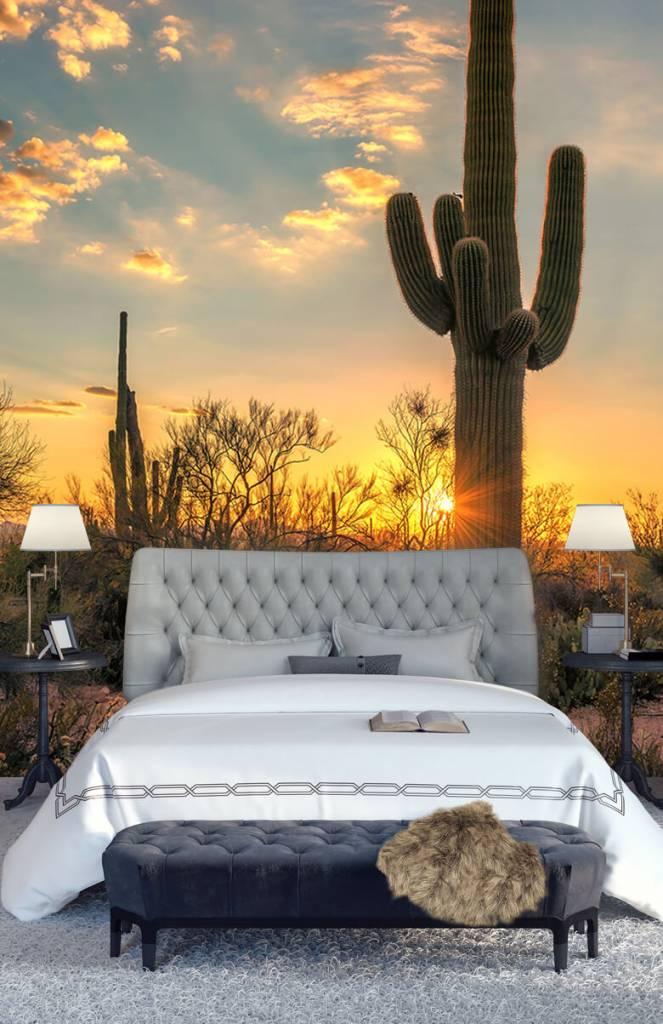 Landschap - Cactus met zonsondergang - Slaapkamer 2