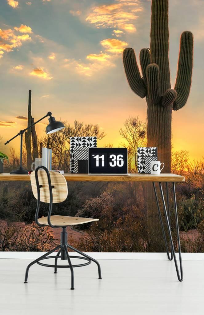 Landschap - Cactus met zonsondergang - Slaapkamer 4