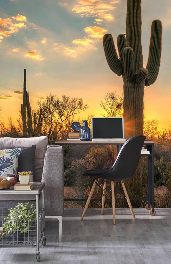 Landschap - Cactus met zonsondergang - Slaapkamer 5
