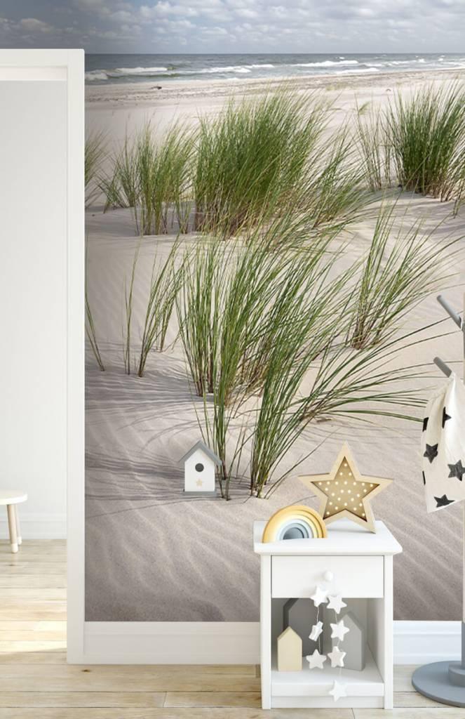 Stranden - Strand met duinplanten - Kinderkamer 1