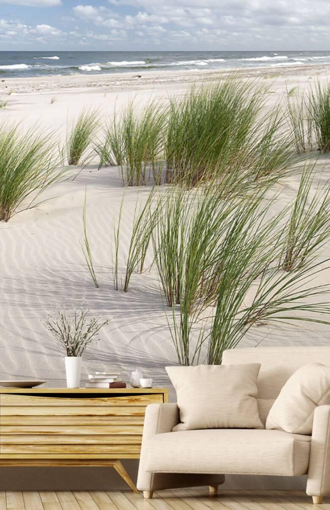 Stranden - Strand met duinplanten - Kinderkamer 2