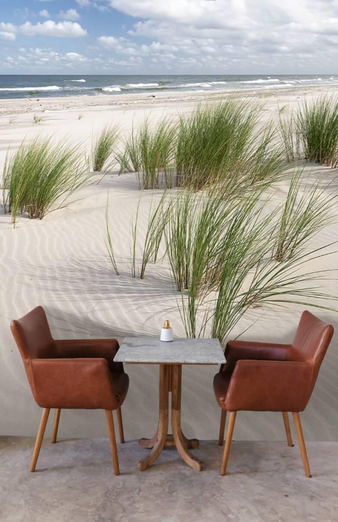 Stranden - Strand met duinplanten - Kinderkamer 3