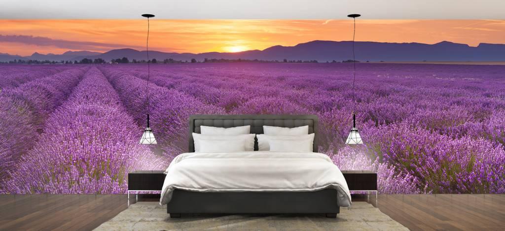 Lavendel - Veld vol lavendel - Slaapkamer 1