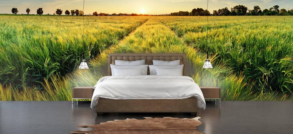 Landschap - Weiland met bandensporen - Slaapkamer 1