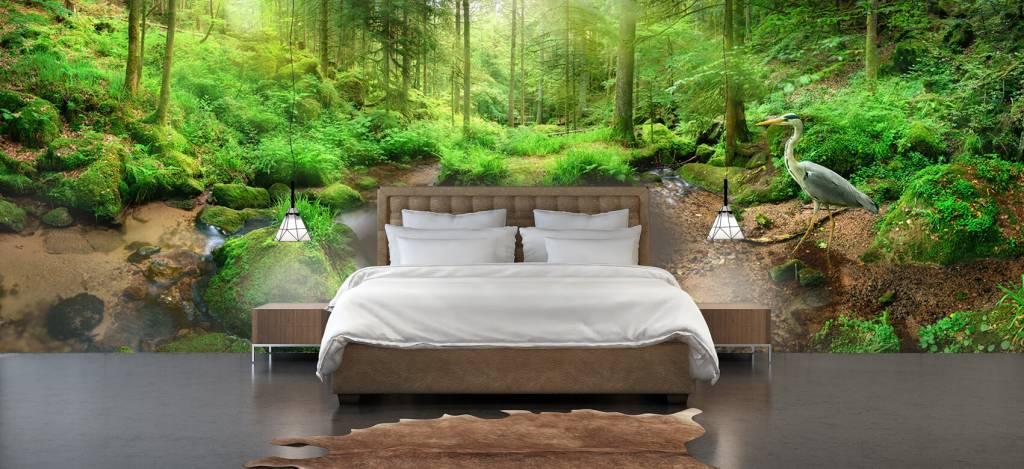 Bos behang - Betoverend boslandschap - Hobbykamer 2