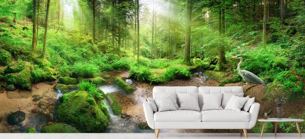 Bos behang - Betoverend boslandschap - Hobbykamer 4