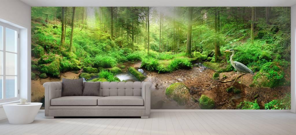 Bos behang - Betoverend boslandschap - Hobbykamer 6