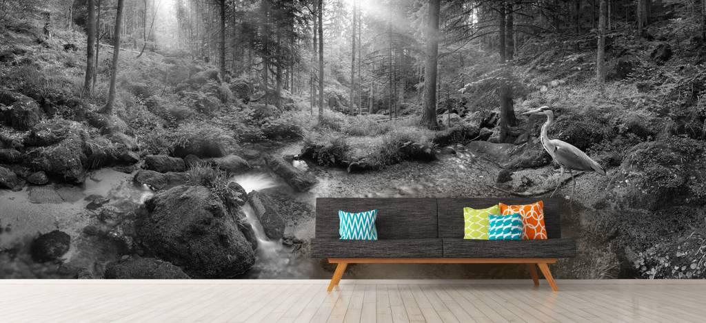 Bos behang - Betoverend boslandschap - Hobbykamer 9
