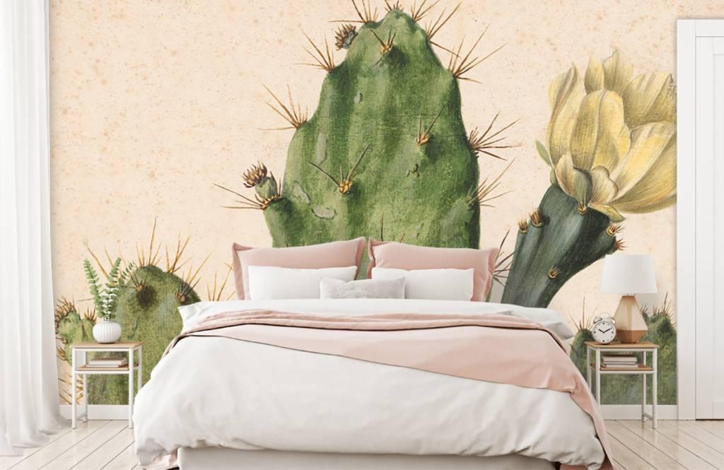 Overige - Bloeiende vijgcactus - Woonkamer 1