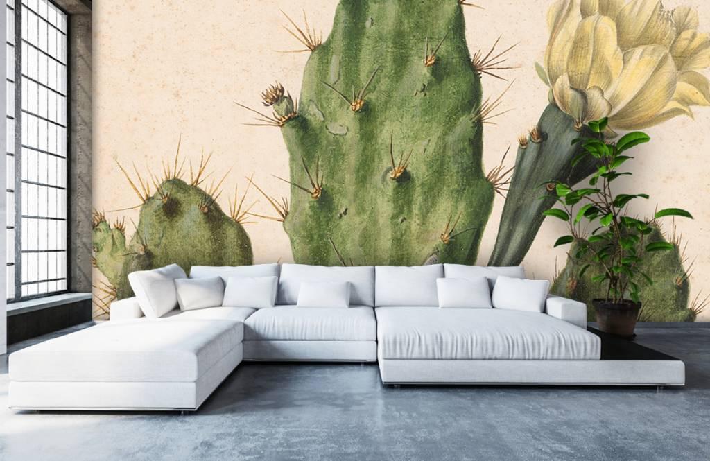 Overige - Bloeiende vijgcactus - Woonkamer 2