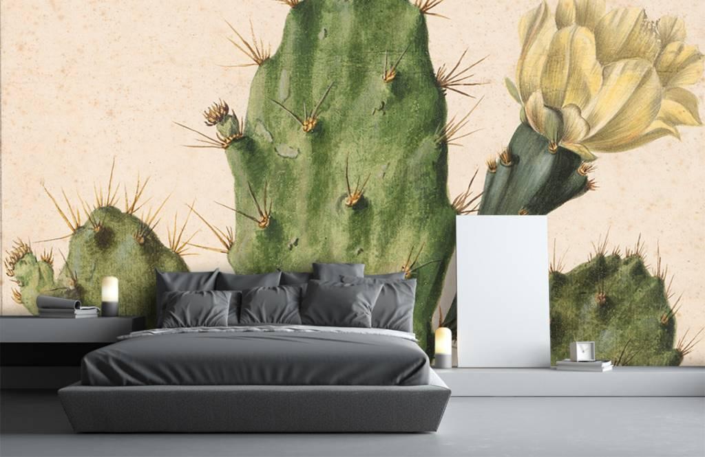 Overige - Bloeiende vijgcactus - Woonkamer 4