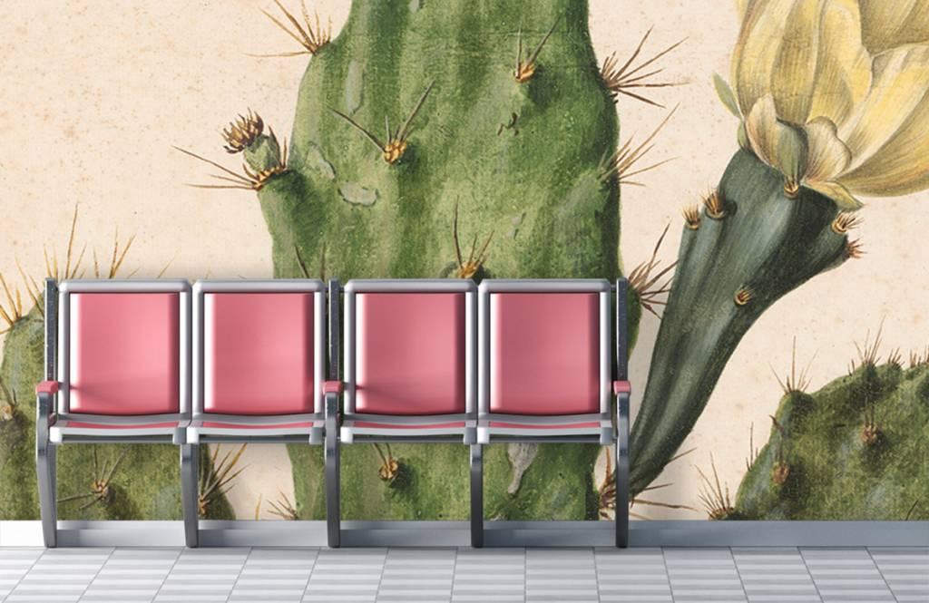 Overige - Bloeiende vijgcactus - Woonkamer 7