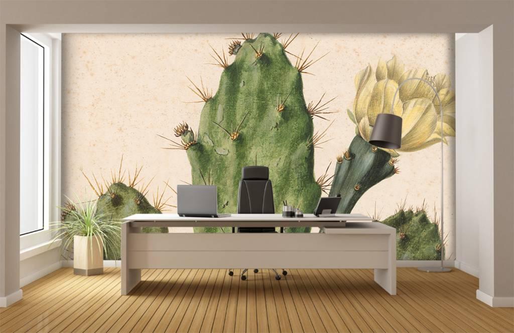 Overige - Bloeiende vijgcactus - Woonkamer 8