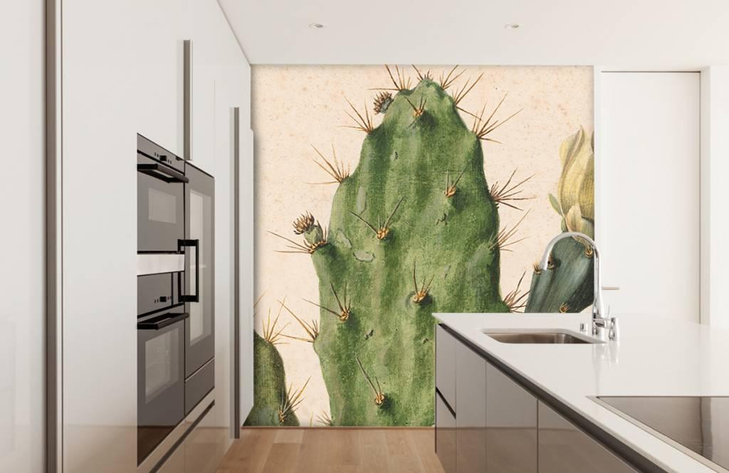 Overige - Bloeiende vijgcactus - Woonkamer 9
