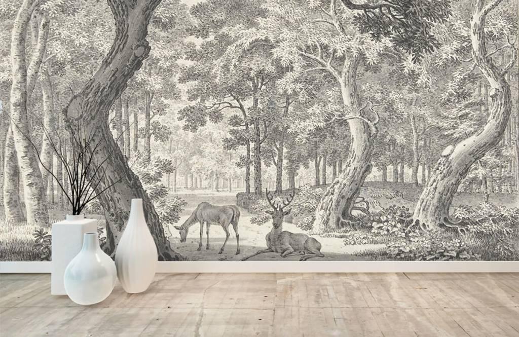 Bos behang - Bosgezicht met twee herten - Slaapkamer 9