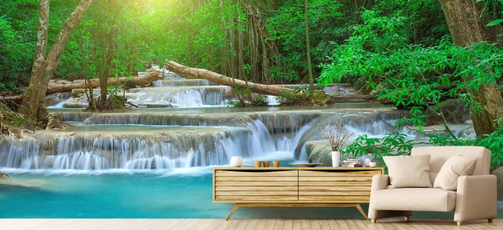 Watervallen - Brede waterval in het bos - Kantine 5