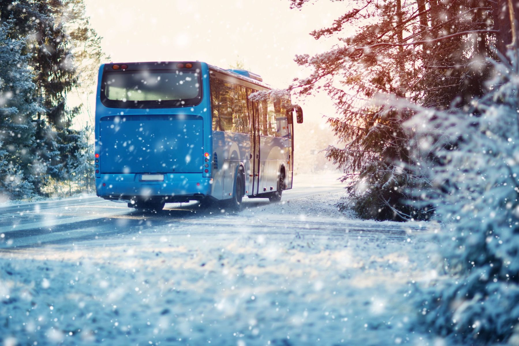 Transport Bus in de winter