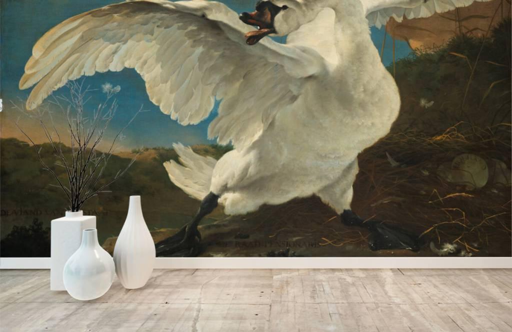Vogel behang - De bedreigde zwaan - Keuken 6