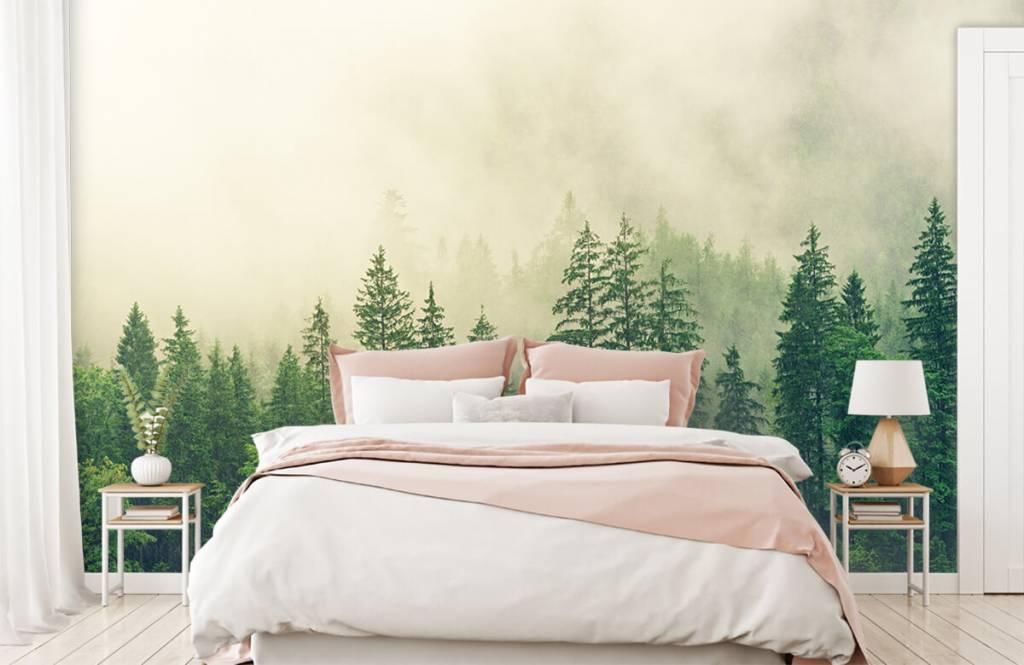 Bos behang - Dennenbomen in de mist - Woonkamer 4