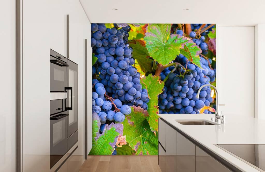 Fruit - Druiven - Kantine 1